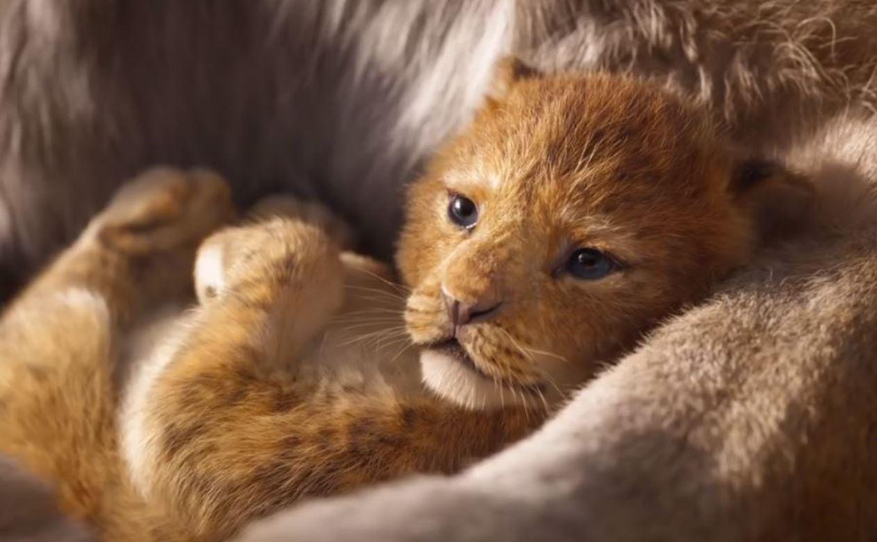 the-lion-king-2019.jpg (97.27 Kb)